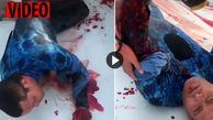 لحظه دلهره آور نجات غواص زخمی پس از حمله مرگبار کوسه