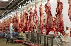 واردات گوشت؛ پای پسرخاله وزیر و پسر معاون وزیر سابق در میان است