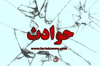 فیلم/ سقوط درخت روی خودروها - خیابان ولیعصر تهران