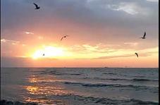 غروب زیبای خورشید در سواحل خلیج فارس