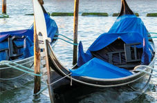 قایقی که برای نیم ساعت سواری آن باید ۹۶۰ هزار تومان پرداخت کنید!