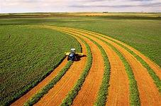 فرآوری ضایعات کشاورزی + فیلم