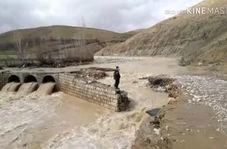 فیلم| سیل پل روستای «مرادآباد گل گل» دلفان را تخریب کرد