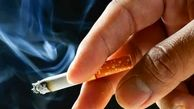 آمار وحشتناک میزان مصرف سیگار در کشور و تلفات ناشی از آن