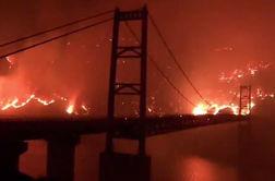 شعلههای آتش درحال سوزاندن کالیفرنیا + فیلم