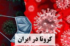 هشدار رئیس اداره مراقبت بیماریهای واگیردار وزارت بهداشت:هنوز پیک کرونا در کشور رد نشده است