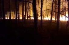 آتش، گریبانگیر بخش زیادی از جنگلهای گیلان + فیلم