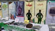 حرکت رعدآسای پلیس برای دستگیری مجرمان پایتخت!