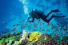 وسیله ساده ای که میتواند ساعتها شما را بدون اکسیژن زیر آب زنده نگه دارد