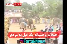 حملات وحشیانه یک فیل به مردم /آیا تا به حال شاهد حملات کشنده یک فیل بوده اید؟