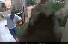 حادثهای که مرد برزیلی حین کشتن سوسک از آن جان سالم بدر برد!