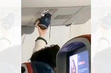 اقدام عجیب مسافر بیفرهنگ در داخل هواپیما!