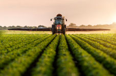 صفرتا صد خرید تضمینی محصولات کشاورزی با دکتر محمد رشیدی