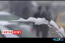 هشدار مهم به مسافران نوروزی+فیلم