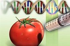 آیا محصولات تراریخته سرطانزا هستند؟
