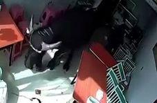 حمله وحشتناک گاو خشمگین به زن قرمزپوش+فیلم