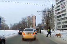 رفتار انسانی مامور پلیس روسیه سوژه رسانه ها شد