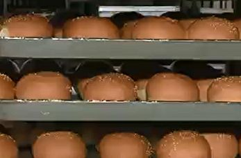 تولید نان دارو برای نخستین بار در ایران