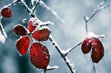 """طبیعت زیبا و زمستانی """"دربندهیر"""""""