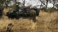 جدال دیدنی شکارچیان آفریقایی مقابل توریستها