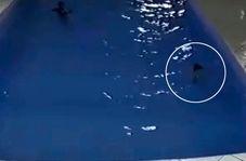 نجات کودک در آخرین لحظه پیش از غرق شدن!