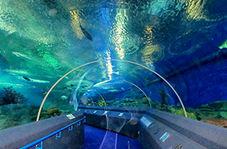 ساخت تونل شناور زیر دریا برای عبور و مرور خودروها!