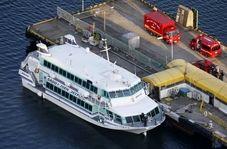 برخورد وال با کشتی مسافربری ژاپنی حادثه ساز شد