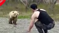 اقدام عجیب یک توریست در محدوده نگهداری خرسها!