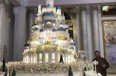 استعداد عجیب قهرمان روسی بوکس در کیک پزی